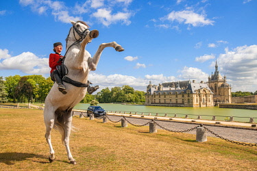 HMS3589736 France, Oise, Chantilly, Chateau de Chantilly, the Grandes Ecuries (Great Stables), Estelle, rider of the Grandes Ecuries, makes up his horse in front of the castle