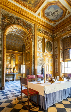 HMS3591225 France, Seine et Marne, Maincy, the castle of Vaux le Vicomte, room of Buffets