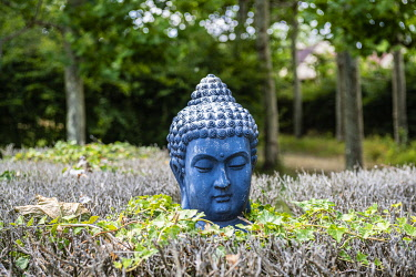 HMS3652959 France, Yvelines (78), Montfort-l'Amaury, Groussay castle, Buddha's head in the gardens