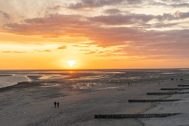 HMS3629268 France, Somme (80), Baie de Somme, Le Crotoy, Sunset over the bay at low tide from the viewpoint on the heights of the city