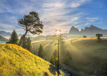CLKMK122703 Alpe di Siusi/Seiser Alm, Dolomites, South Tyrol, Italy. Sunrise on the Alpe di Siusi/Seiser Alm