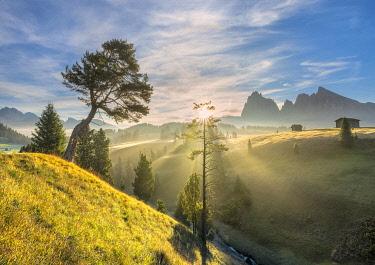 CLKMK122703 Alpe di Siusi/Seiser Alm, Dolomites, South Tyrol, Italy. Sunrise on the Alpe di Siusi/Seiser Alm