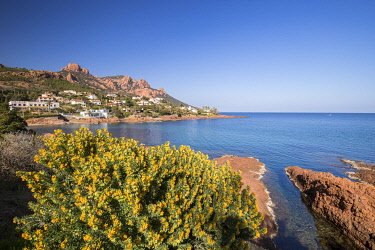 HMS3501187 France, Var, Saint Raphael, Esterel Corniche, Creek of Antheor, in the background the Esterel massif and the peaks of the Cap Roux
