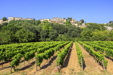 HMS3599286 France, Vaucluse, regional natural park of Luberon, Menerbes, labeled the Most Beautiful Villages of France