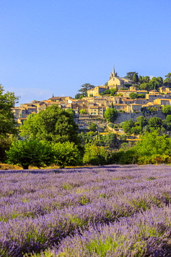 HMS3599290 France, Vaucluse, regional natural reserve of Luberon, Bonnieux,