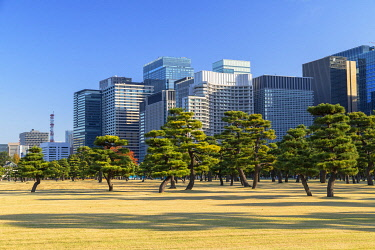 JAP2123AWRF Skyscrapers of Marunouchi and gardens of Imperial Palace, Tokyo, Japan
