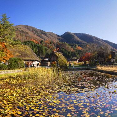 JAP2137AWRF Traditional houses of Ogimachi (UNESCO World Heritage Site), Shirakawa-go, Toyama Prefecture, Japan