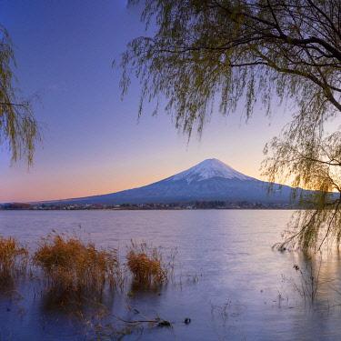 JAP2158AWRF Mount Fuji and Lake Kawaguchi at sunset, Yamanashi Prefecture, Japan