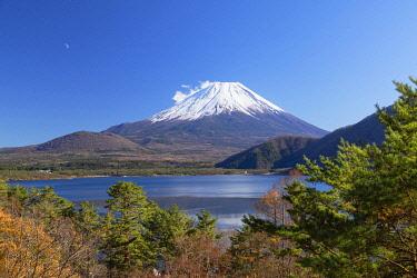 JAP2166AWRF Mount Fuji and Lake Motosu, Yamanashi Prefecture, Japan