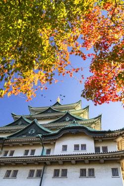 JAP2258AW Nagoya Castle, Nagoya, Japan