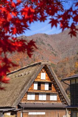 JAP2275AW Traditional house of Ogimachi (UNESCO World Heritage Site), Shirakawa-go, Toyama Prefecture, Japan