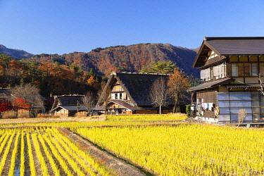 JAP2283AW Traditional houses of Ogimachi (UNESCO World Heritage Site), Shirakawa-go, Toyama Prefecture, Japan