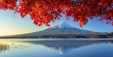 JAP2315AW Mount Fuji and Lake Kawaguchi, Yamanashi Prefecture, Japan