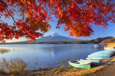 JAP2319AW Mount Fuji and Lake Kawaguchi, Yamanashi Prefecture, Japan