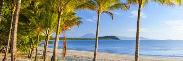 AUS3806AW View through palm trees on Port Douglas Beach. Port Douglas, Far North Queensland, Queensland, Australia
