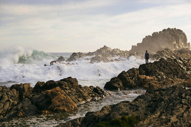 IBLADR03722314 Rocky coast, Tsitsikamma, Eastern Cape, South Africa, Africa