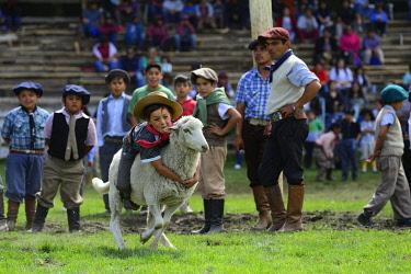 IBLGIV05086103 Child Rides on Sheep, Rodeo, Fiesta Nacional del Puestero, Junín de los Andes, Province Neuquén, Argentina, South America