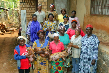 IBLHEH00896775 Group picture of women with their piglets in a piggery in Bamenda, Cameroon, Africa