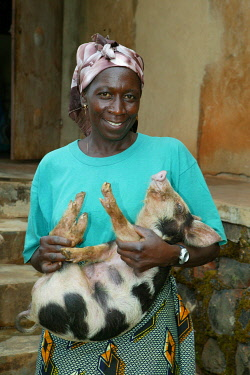 IBLHEH00896778 Woman holding a piglet in a piggery in Bamenda, Cameroon, Africa