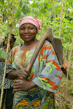 IBLHEH00897066 Woman carrying a spade to work in a maniok field, Bamenda, Cameroon, Africa
