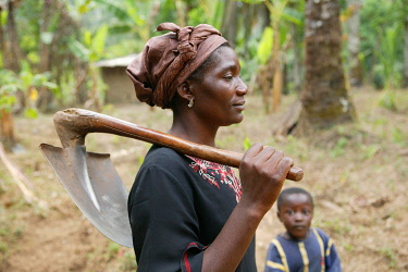 IBLHEH00897090 Women carrying a spade to work in a maniok field, Bamenda, Cameroon, Africa