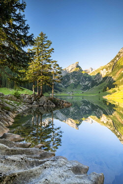 IBXROH05033010 Mountains reflected at sunrise in Lake Seealpsee, Alpstein, Canton Appenzell, Switzerland, Europe