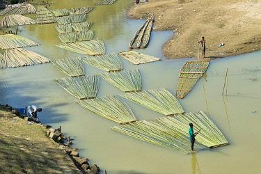 AS03KSU0279 Transporting bamboo timber on the river, Chittagong, Bangladesh.