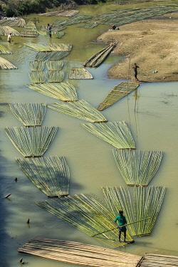 AS03KSU0281 Transporting bamboo timber on the river, Chittagong, Bangladesh.