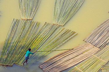 AS03KSU0282 Transporting bamboo timber on the river, Chittagong, Bangladesh.