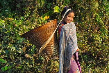 AS03KSU0299 Khumi tribe woman carrying basket, Chimbuk Hill, Bandarban, Chittagong Division, Bangladesh.