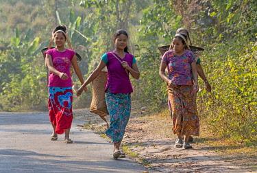 AS03KSU0303 Khumi tribe woman carrying a basket, Chimbuk Hill, Bandarban, Chittagong Division, Bangladesh.