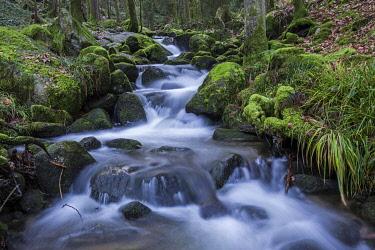 IBXHAL05106707 Gertelbach, Gertelbach Falls, Gertelbach Gorge, Buhl, Buhlertal, Northern Black Forest, Black Forest, Baden-Wurttemberg, Germany, Europe