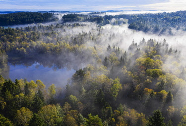 IBXMAN05098728 Fogging over forest landscape and pond, Birkensee near Geretsried, drone shot, Upper Bavaria, Bavaria, Germany, Europe