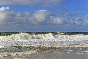 IBXRBA05093193 Running out waves on the sandy beach, blue sky with deep cumulus clouds (Cumulus) over the North Sea, Sylt, North Frisian Island, North Frisia, Schleswig-Holstein, Germany, Europe