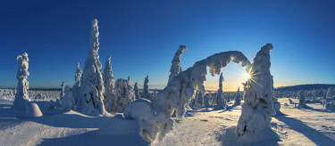 FIN1148AW Riisitunturi National Park, Posio, Lapland, Finland