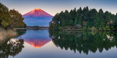 JAP2373AW Mt. Fuji Reflecting in Lake Tanuki, Fujinomiya, Shizouka, Honshu, Japan