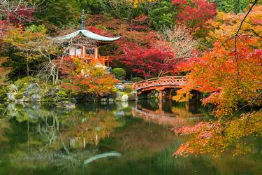 JAP2404AW Bentendo Hall & Bridge in Autumn, Daigo-ji Temple, Kyoto, Japan