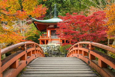 JAP2405AW Bentendo Hall & Bridge in Autumn, Daigo-ji Temple, Kyoto, Japan