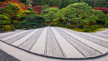 JAP2408AW Sand Garden at Ginkaku-ji Silver Pavilion in Autumn, Kyoto, Japan