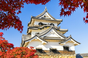 Hikone Castle in Autumn, Shiga Prefecture, Japan