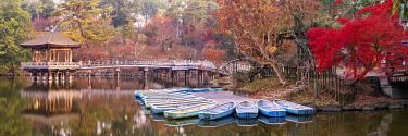 JAP2445AW Ukimido Pavilion in Autumn, Nara Park, Nara, Kansai, Japan