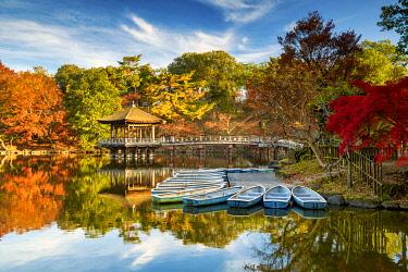 JAP2446AW Ukimido Pavilion in Autumn, Nara Park, Nara, Kansai, Japan