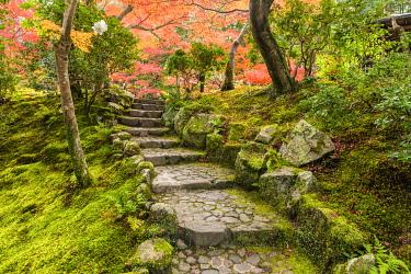 JAP2449AW Garden Steps in Autumn, Jardin Isuien, Nara, Kansai, Japan