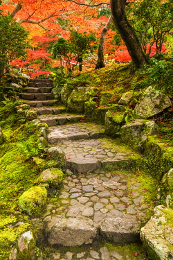 JAP2451AW Garden Steps in Autumn, Jardin Isuien, Nara, Kansai, Japan