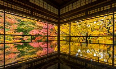JAP2458AW Rurikoin Temple Garden Reflection, Kyoto, Japan