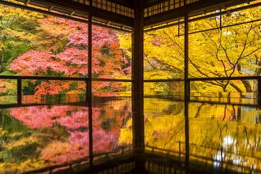 JAP2459AW Rurikoin Temple Garden Reflection, Kyoto, Japan