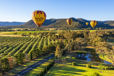 AUS4116AW Ballooning over Pakolbin. Hunter Valley, The Hunter, New South Wales, Australia