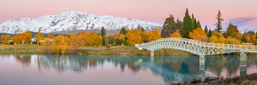 NZ10060AW Bridge over Scott Pond. Lake Tekapo, Canterbury, South Island, New Zealand