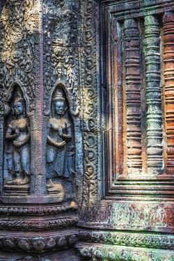 CM043RF Cambodia, Siem Reap, Angkor Wat Complex (Unesco Site), Ta Prohm temple