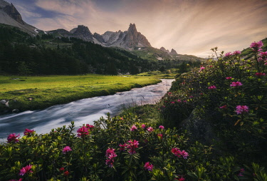 FRA11816AW Alpine meadows during a summer sunset, Val Claree, Southern France